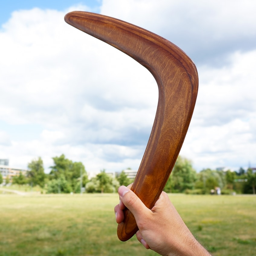 Brown boomerang recreational game